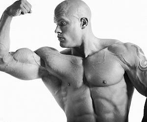 moderno bodybuilding